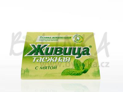 Sibiřská žvýkací pryskyřice s mátou